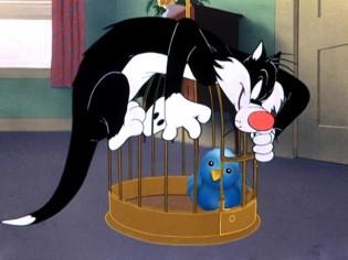 twitter birdcage