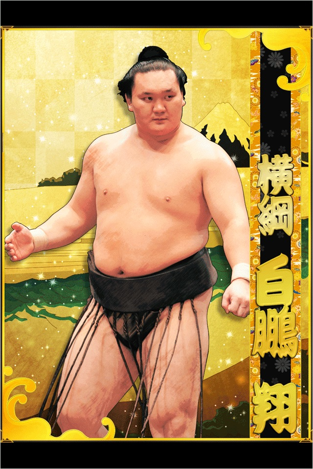 sumo photo 3