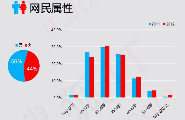 China internet users stats for 2012 - gender and age