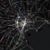 Mobile Service Disruption from Great Japan Earthquake Visualized