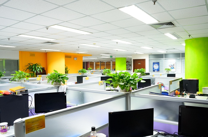 PapayaMobile office productivity