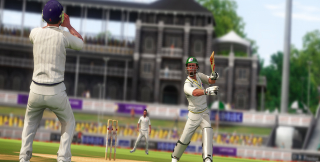 adult cricket games
