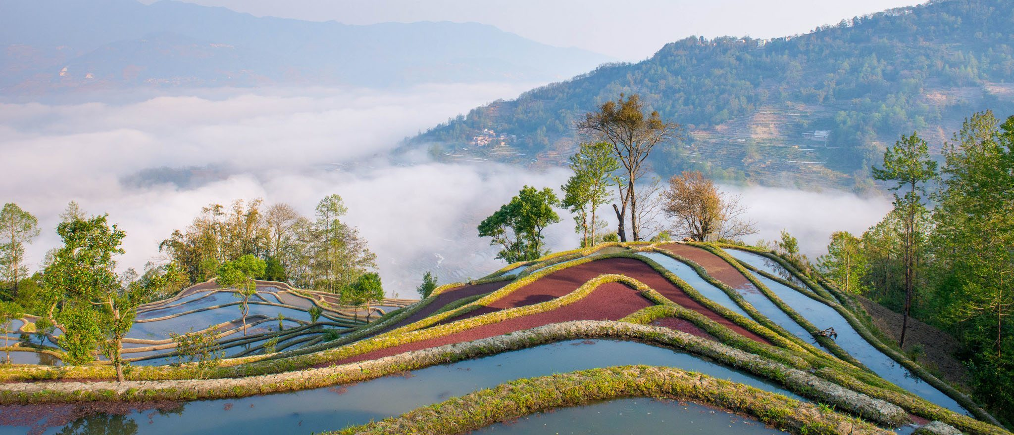 Agriculture tech: next big opportunity in Southeast Asia?